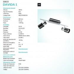 DAVIDA 2L